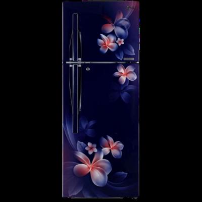 LG 260 L 4 Star Double Door Refrigerator (T292RBPN, Blue Plumeria)