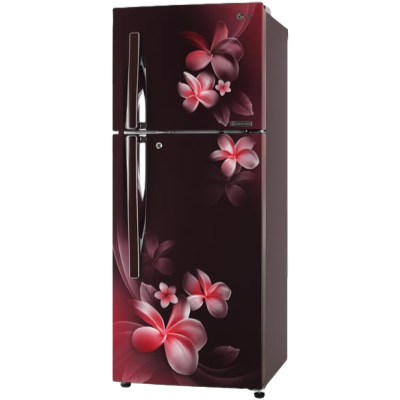 Picture of LG 265 L 4 Star Double Door Refrigerator (T292RSPN, Amber Steel)